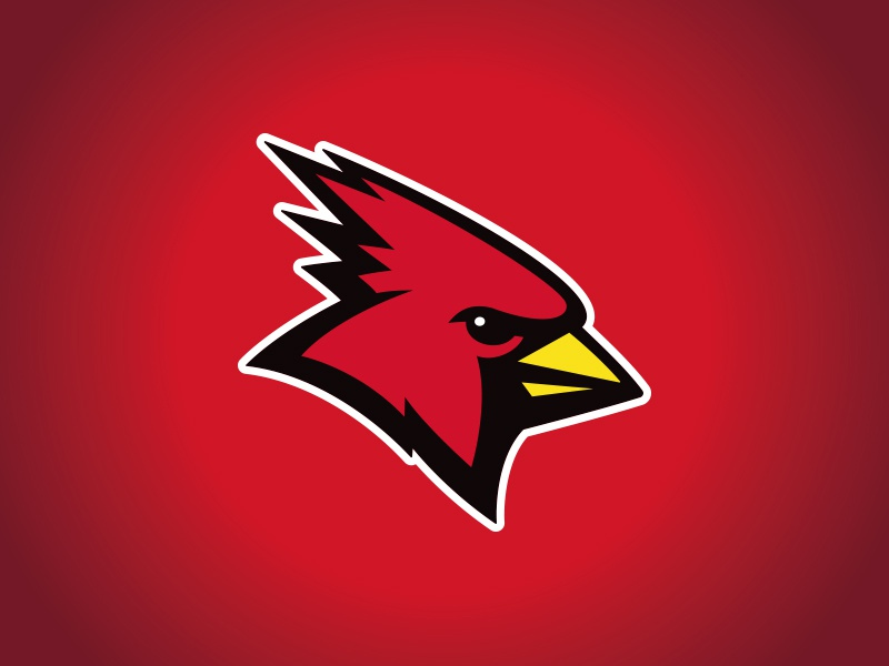 SUNY Plattsburgh Athletic Rebrand mascot character athletics red college cardinal bird illustration custom design