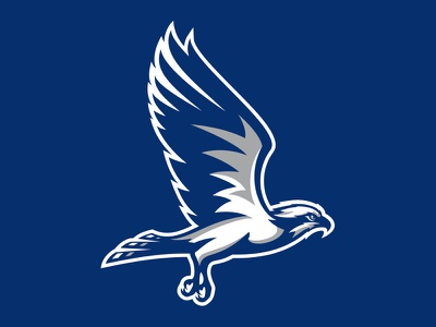 Broward College Seahawks wings osprey hawk seahawks college basketball baseball athletic sports illustration custom design