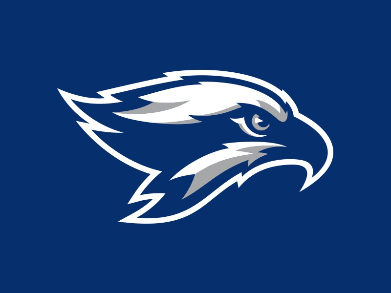 Broward College Seahawks wings osprey hawk seahawks college basketball baseball athletic sports illustration custom design