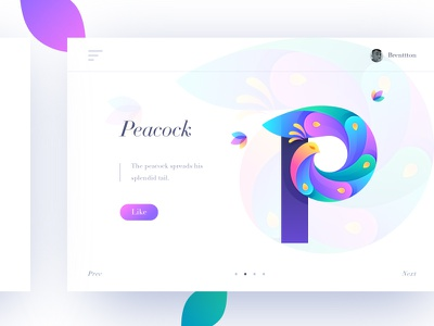 P&Peacock brenttton colorful bird flowers web logo typography illustration graphic gradients feathers colors