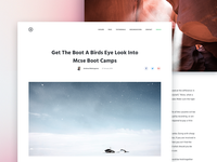 Article view