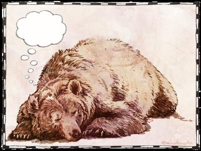 Blank Bear playoff texture wacom photoshop digital ink animal drawing bear grizzly