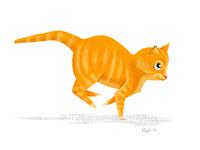 Kitty-Cat Running