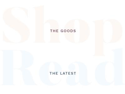 Heading Pairs brand branding blog lifestyle bold feminine sans clean serif chunky typography type
