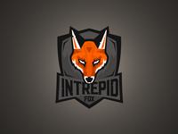 Intrepid Fox Gaming
