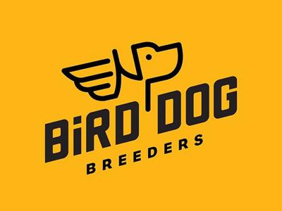 Bird Dog dog bird wings labrador hunting