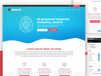 Website Design brand development ui website design