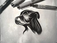 Meet Wessy - logo design