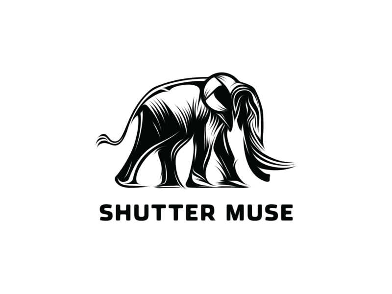 Shuttermuse - Final Logo shuttermuse elephant logo brand mark animal vector graphic linocut  woodcut style