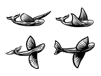 Flying Whale (pt2) design process process sketch whale logo animal logo whale animal custom logo design symbol designer branding identity identity designer mark brandmark logo designer logo design logo