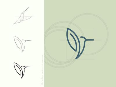 Hummingbird logo design icon brandmark logo paperclip hummingbird