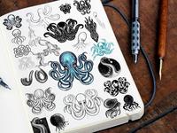 Octopus, squid, kraken logo exploration