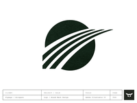Brand Mark & Logo Design / Flyways Intelligence