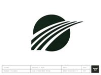 Brand Mark & Logo Design / Flyways Intelligence