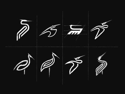 White Stork Logo Design Sketches