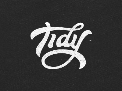 Tidy - Logotype tidy logotype brush pentel type lettering logo