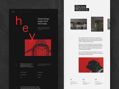 Vuurberg — About Page website webdesign vulcano ui portfolio interface design
