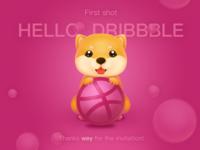 Hello Dribbble ! 2018
