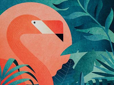 Bird of Paradise vector retro bird paradise design texture illustrator illustration tropical floral flamingo