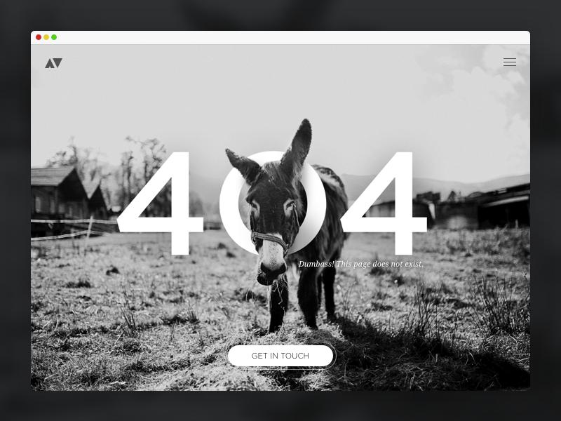 404 Donkey black and white donkey 404