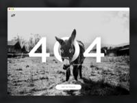 404 Donkey