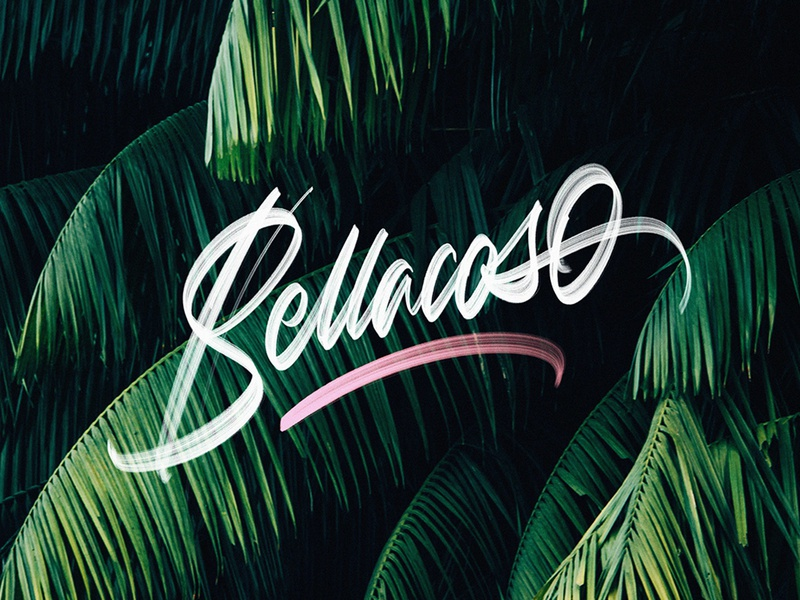 Bellacoso -v2 brushpen colors textures details calligraphy procreate lettering