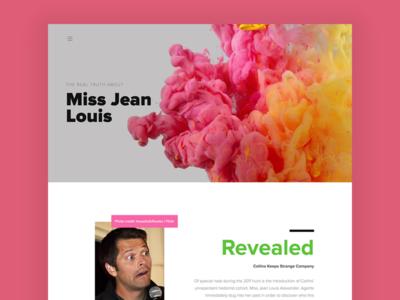 Miss Jean Louis Gishwhes Item misha collins gishwhes gray black green pink hero image big type asymmetry typography