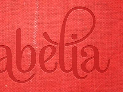Babèlia Fixed logo logotype mishka typography book cover gotham fabric texture