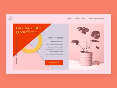 Plant Shop flat plant care plants plant web pattern vector typography webdesign branding logo adobexd ux ui