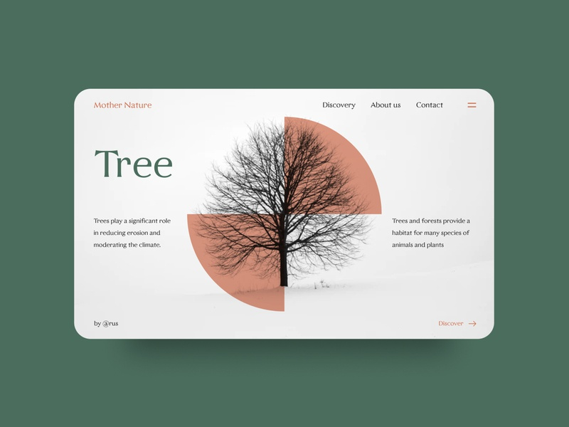 Tree green nature website layout user interface ux ui creative inspiration graphic illustration