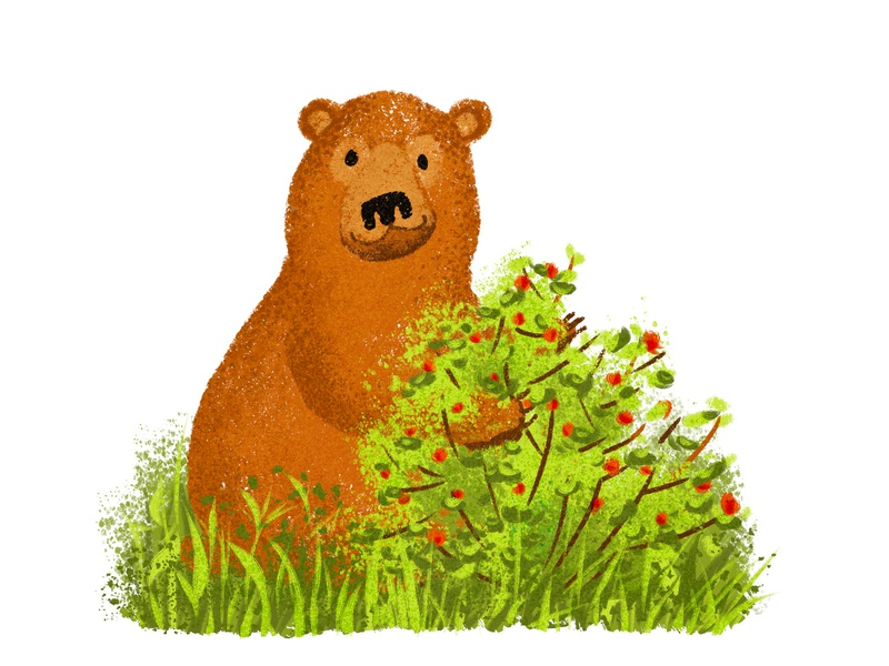 bear in a bush design smile eating green orange brown bush raspberry bear character