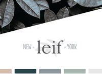 Leif - final logo and colors