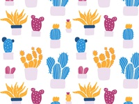 Cactuses and patterns