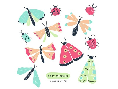 Cute bugs, butterflies and moth collection✌🏻✨