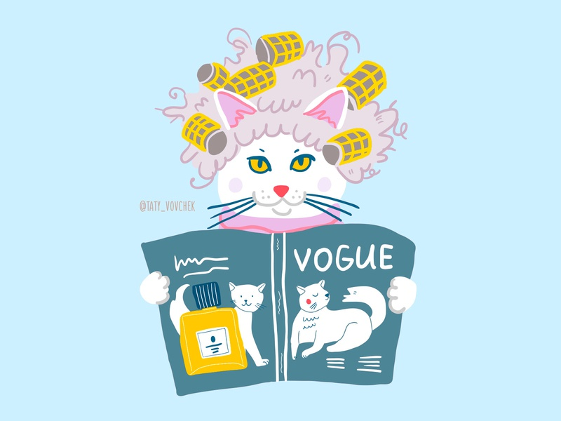 Very fashionable cat blog illustration vector art vector illustration vector doodle cat children illustration sketch dog character design cute illustrator kids illustration postcard character children book illustration picture book illustration taty vovchek
