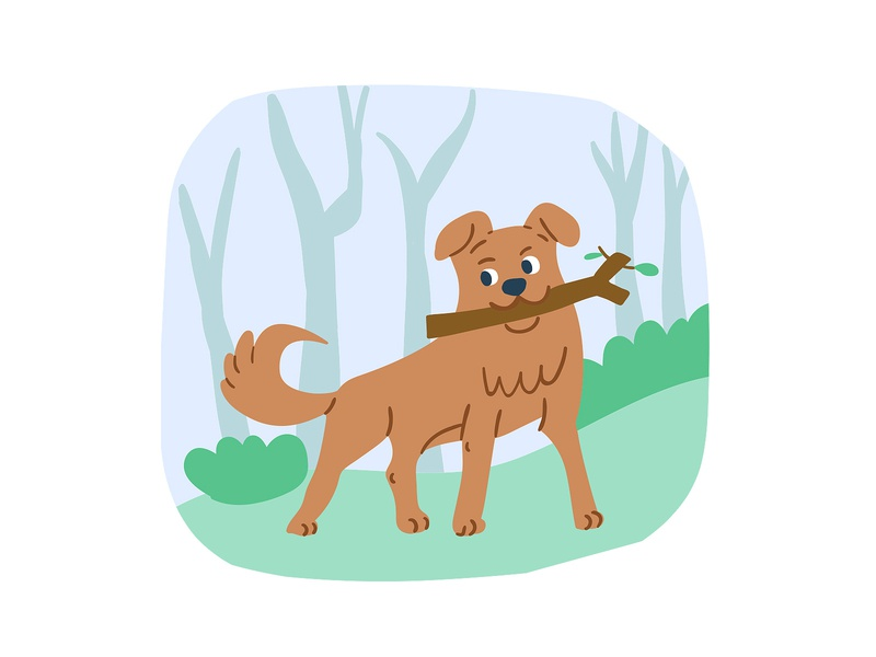 Cute dog with the stick lifestyle park blog design blog cover blog post adobe illustrator vector doodle dog kids illustration illustrator postcard cute character picture book children book illustration illustration taty vovchek