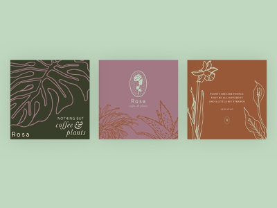 Rosa Coffee & Plants Social Media Illustrations branding social media coffee leaf flower plant hand drawn illustration