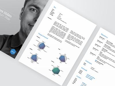 Resume template chart experience job work graph resume template cv curriculum vitae personal linkedin