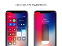 A closer look at the Ring/Silent switch