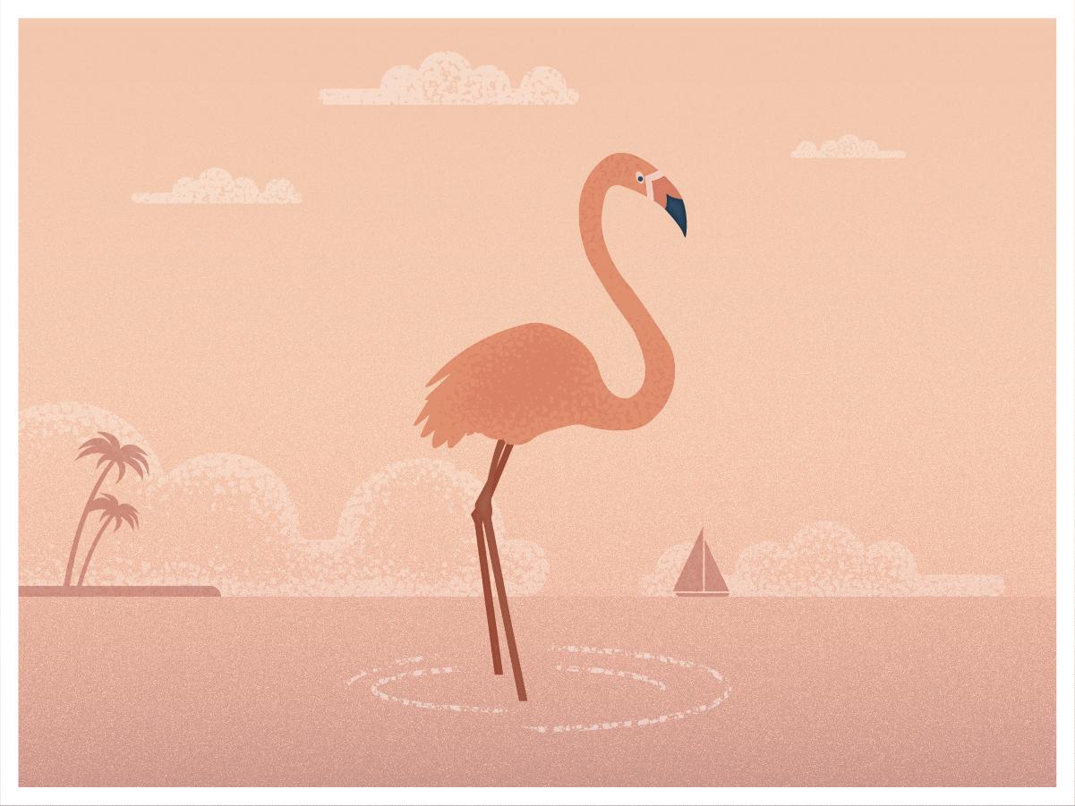 Flamingo illustrator creative ui design gradient vector illustration flamingo