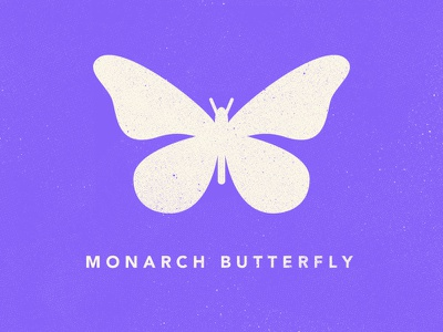 Butterfly Icon monarch butterfly vector icon butterfly illustration design james mcdonough texture insect