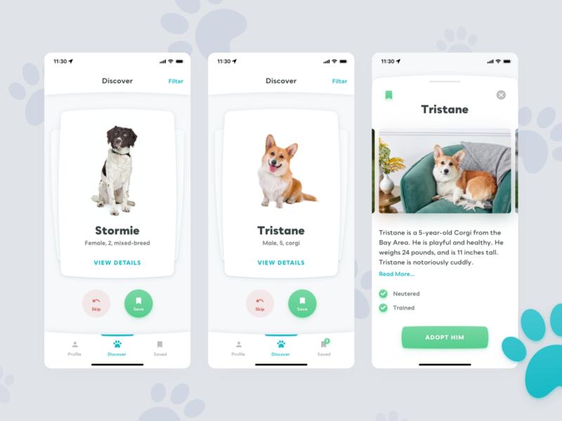 Adopt a pet application adoption tinder app mobile app pet app dog pet pets adopt pet adopt