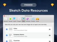 FREEBIE – Sketch – Data Resources