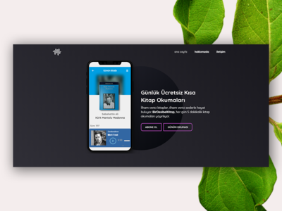 Audio Book Landing Page webflow web design ui page landing
