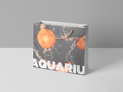 Shopping bag for an aquarium