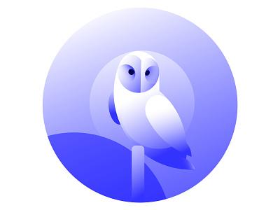 owl vector minimal illustration birds gradient blue owl