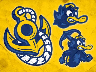 Blue & Gold Concept