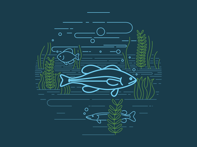 Largemouth Bass water animals midwest vector illustration fish