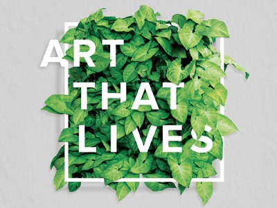 Ambius Com C 800x600 type design communication design creative brochure design typography sydney creative typography brochure design sydney brochure design australia sydney brochure typography