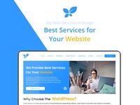 Big Web Services   UI/UX Design & Development